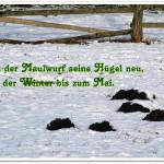 Bauernweisheit für Januar – Zitat im Bild #4