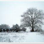 winterliche Melancholie