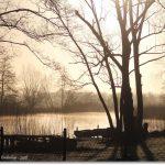sonniger Aprilmorgen